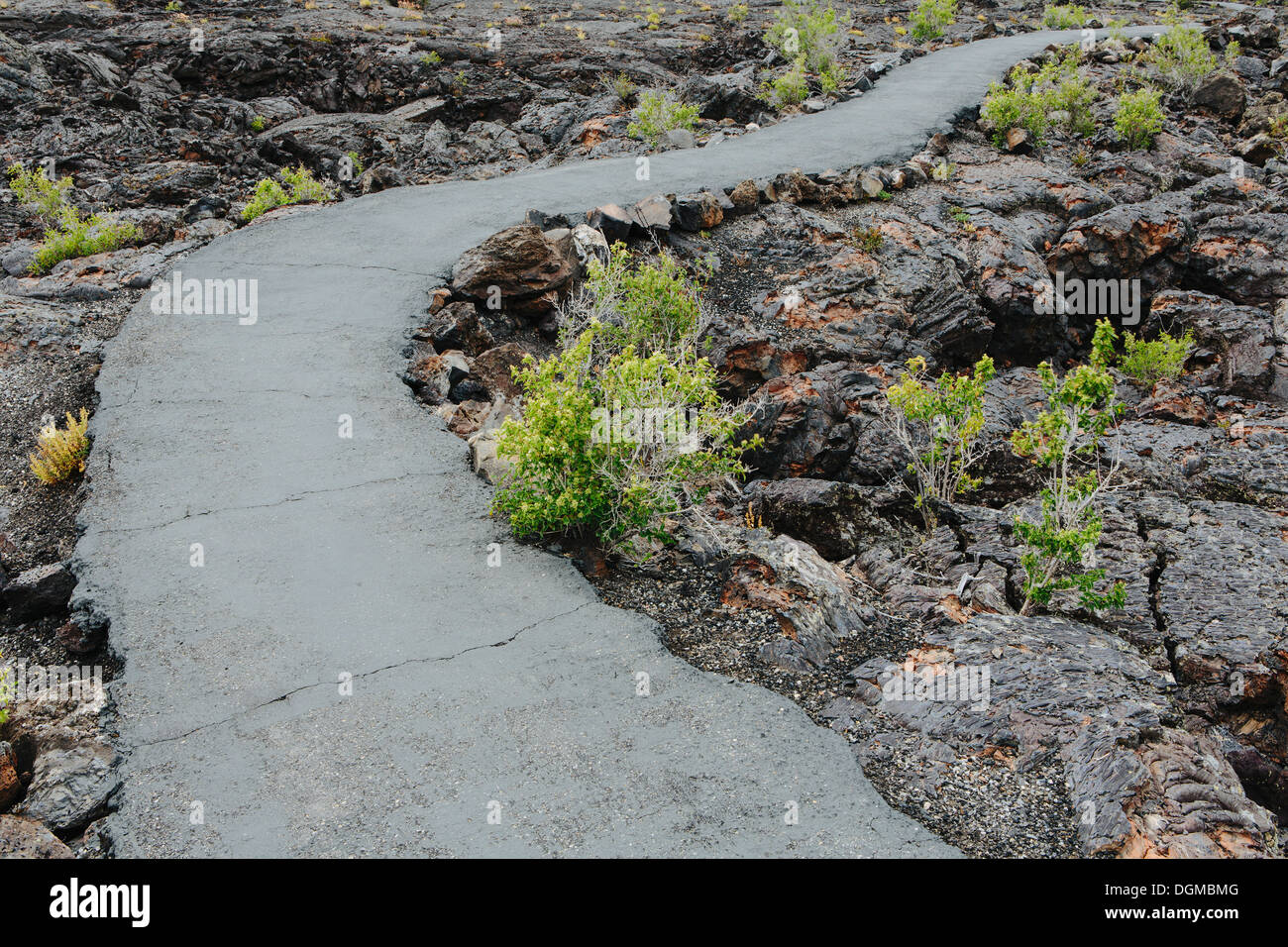 paved pathway lava fields Craters of the Moon national monument preserve Butte County Idaho Sagebrush plants growing. - Stock Image