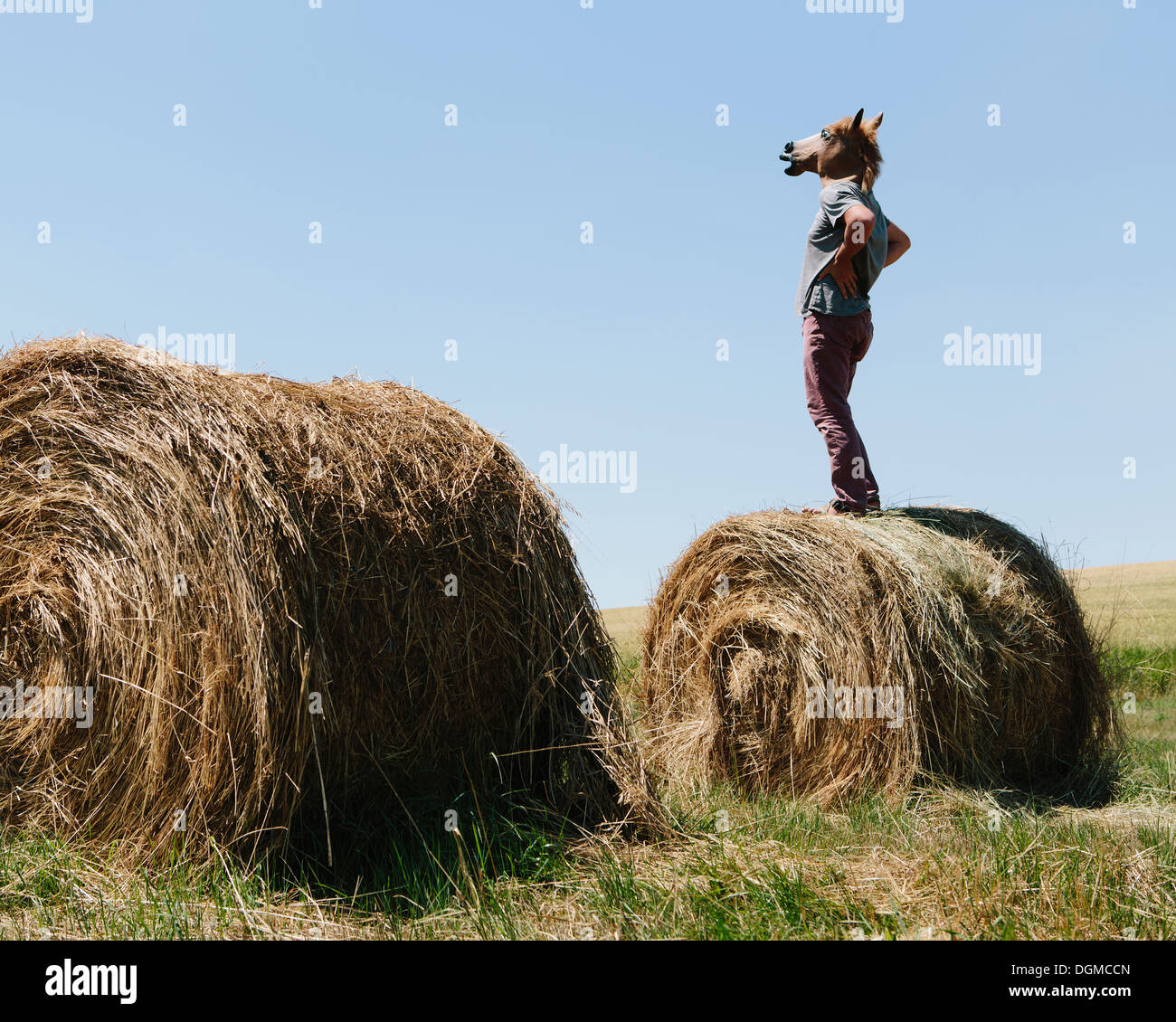 A man wearing a horse mask, standing on a hay bale, looking out over farmland. - Stock Image