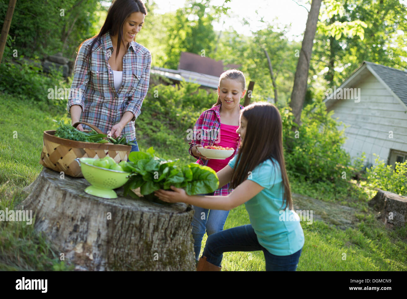 Organic farm. Summer party. Two girls and a young woman preparing salads and vegetables for a meal. - Stock Image