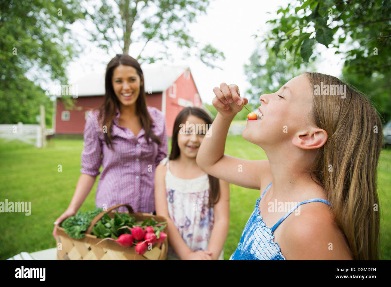 Family party. Two young girls standing by a table, one eating a fresh ripe cherry. A young woman carrying a bowl Stock Photo