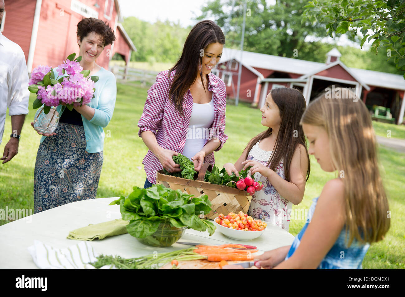 Family party. parents children around table preparing meal fresh picked salads, fruits vegetables - Stock Image