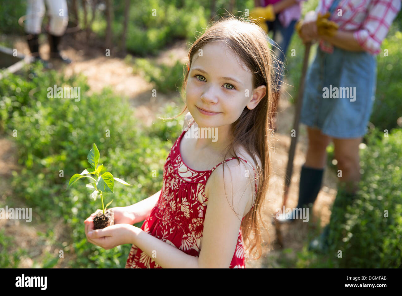 A woman and a child. One holding a young plant with green foliage and a healthy rootball in her hands. - Stock Image