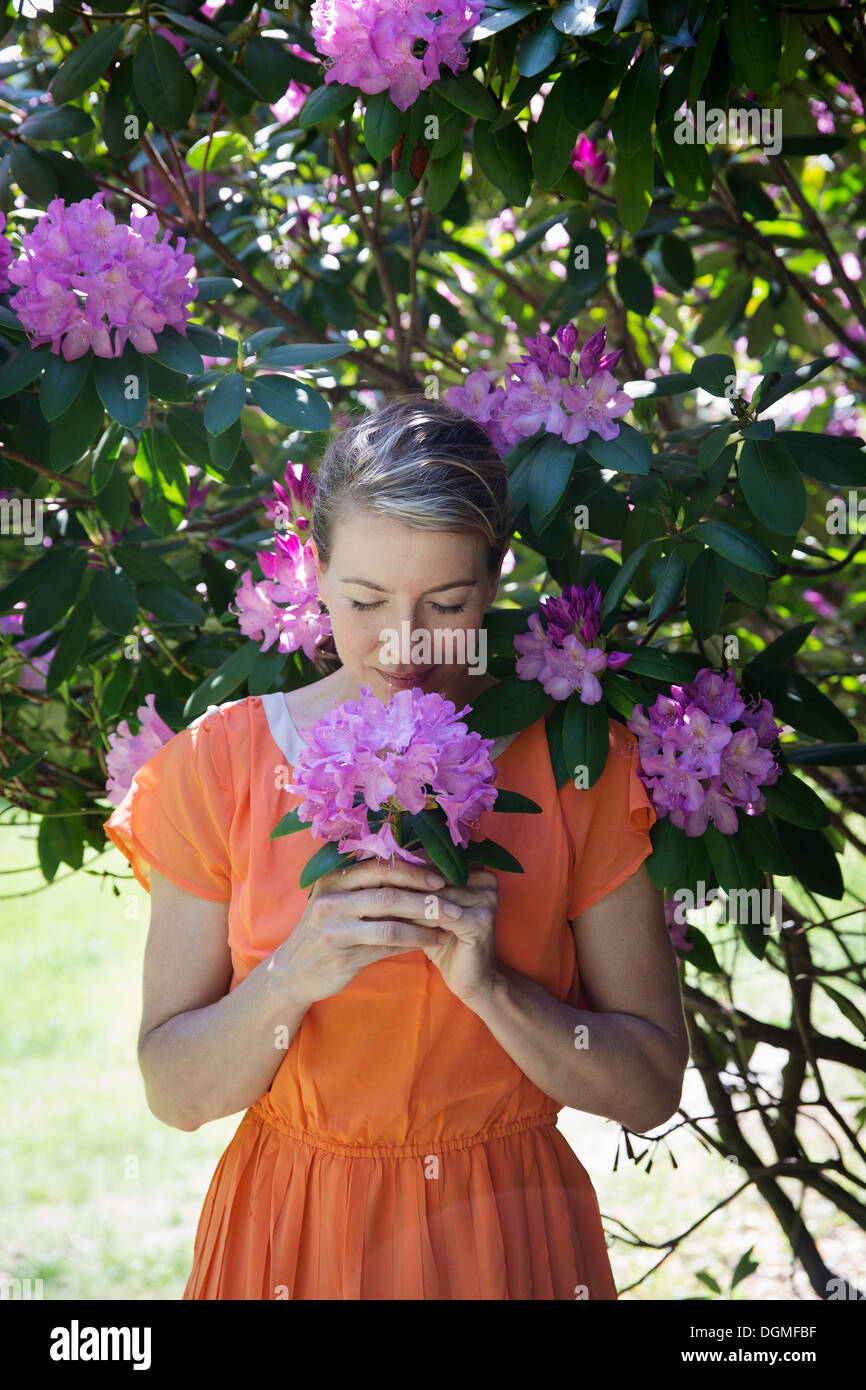 A woman in an orange summer dress standing under a shrub, holding a large purple flowerhead. - Stock Image