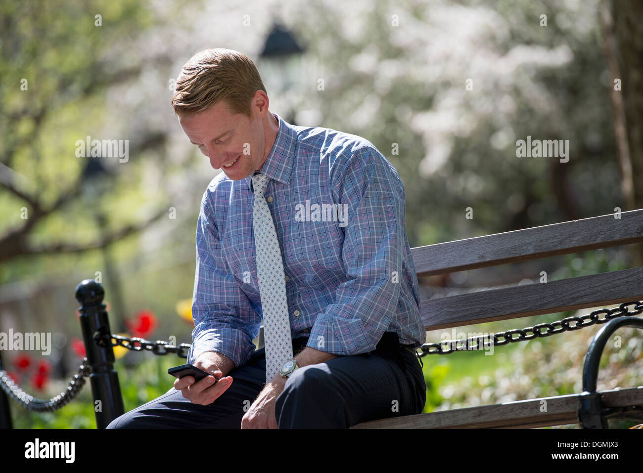 A businessman in a shirt with white tie, sitting on a park bench under the shade of a tree with blossom. - Stock Image