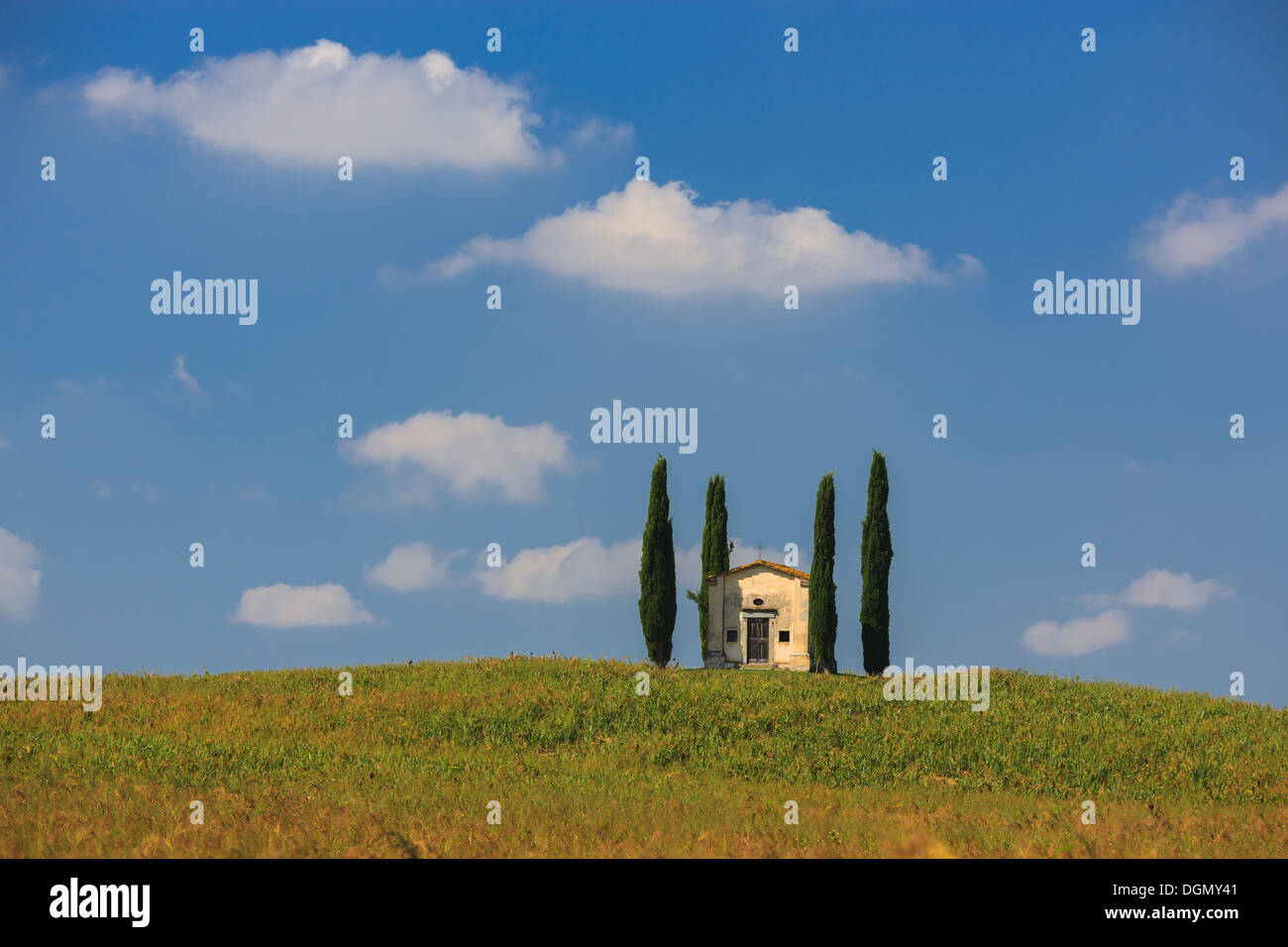 Little chapel in the heart of the Tuscany, near Pisa, Italy - Stock Image