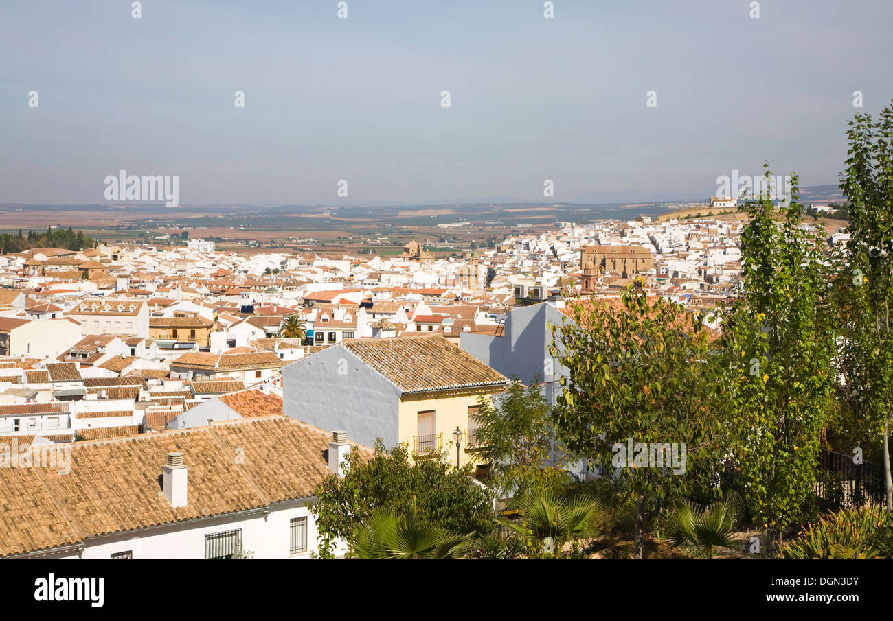 Historic whitewashed buildings view over centre of Antequera, Spain - Stock Image