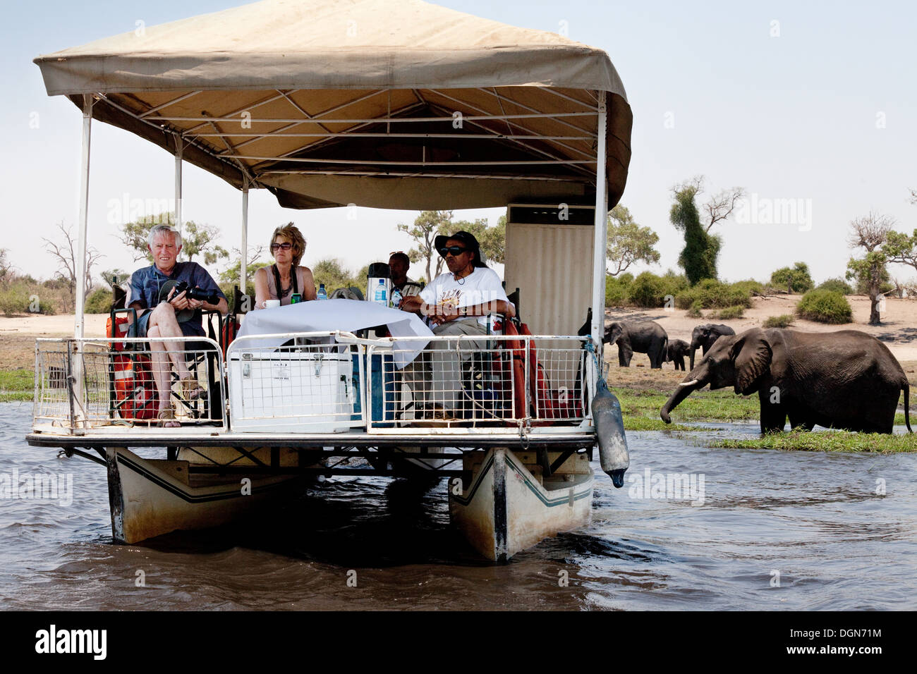 Tourists on a luxury boat safari with elephants, Chobe River, Chobe National park, Botswana Africa Stock Photo