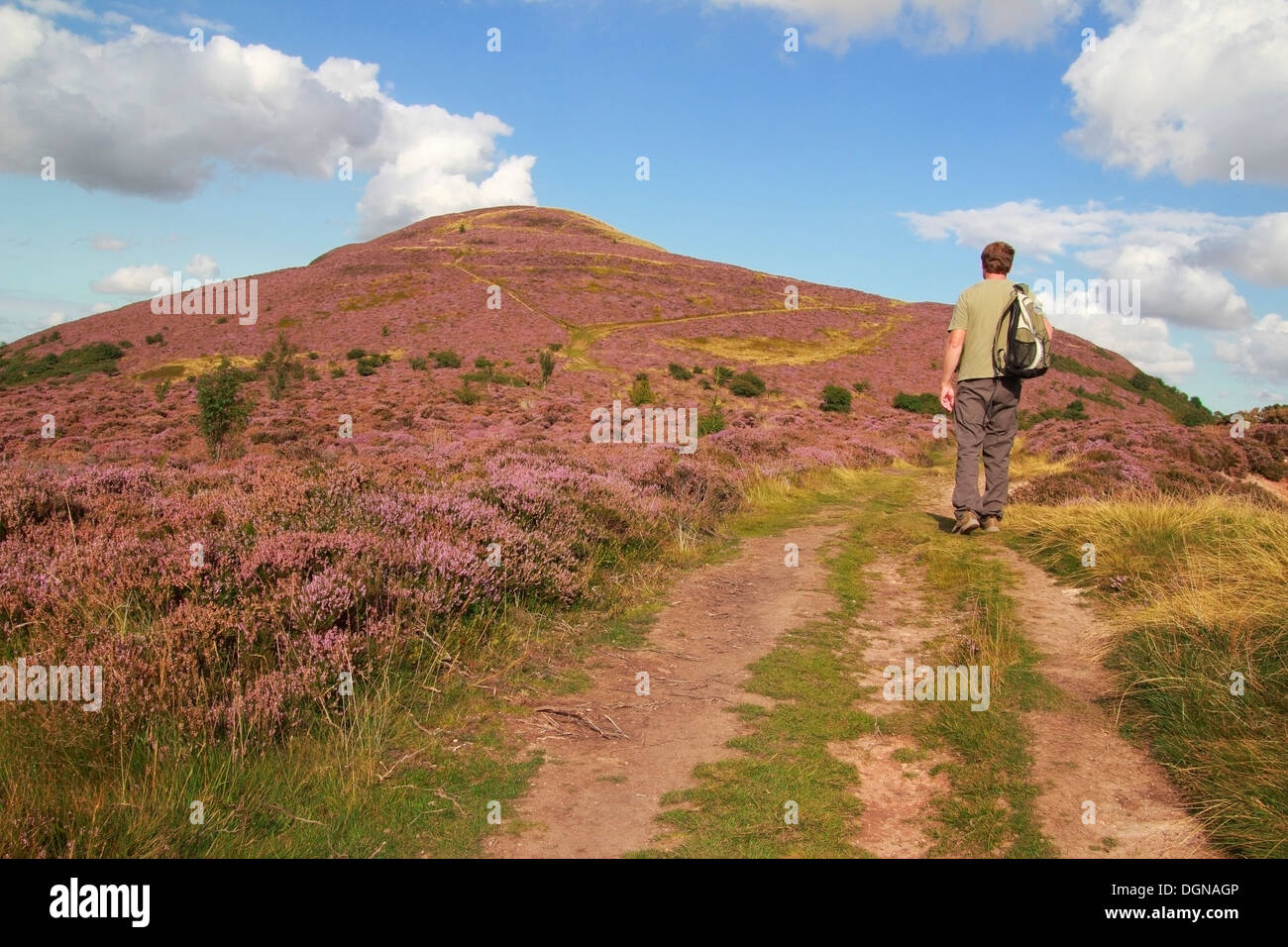 Caucasian Male Walker Walking Uphill to Eildon Hill North, Eildon Hills, Borders, Scotland, UK MODEL RELEASED Stock Photo