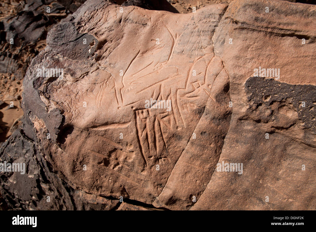 Prehistoric rock carvings at Oued Mestakou on the Tata to Akka road in Morocco. rock-art - Stock Image