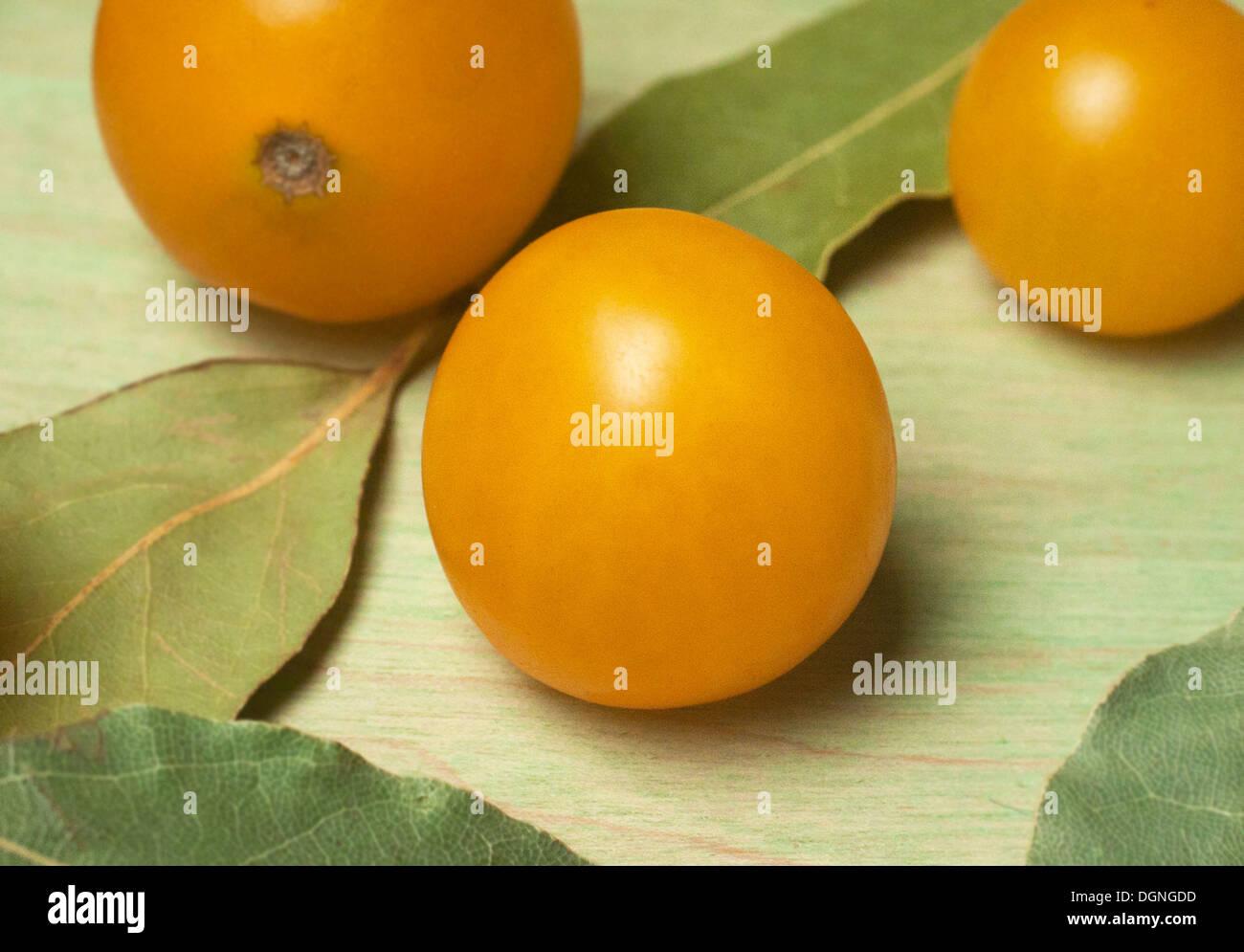 Yellow grape tomato close up - Stock Image