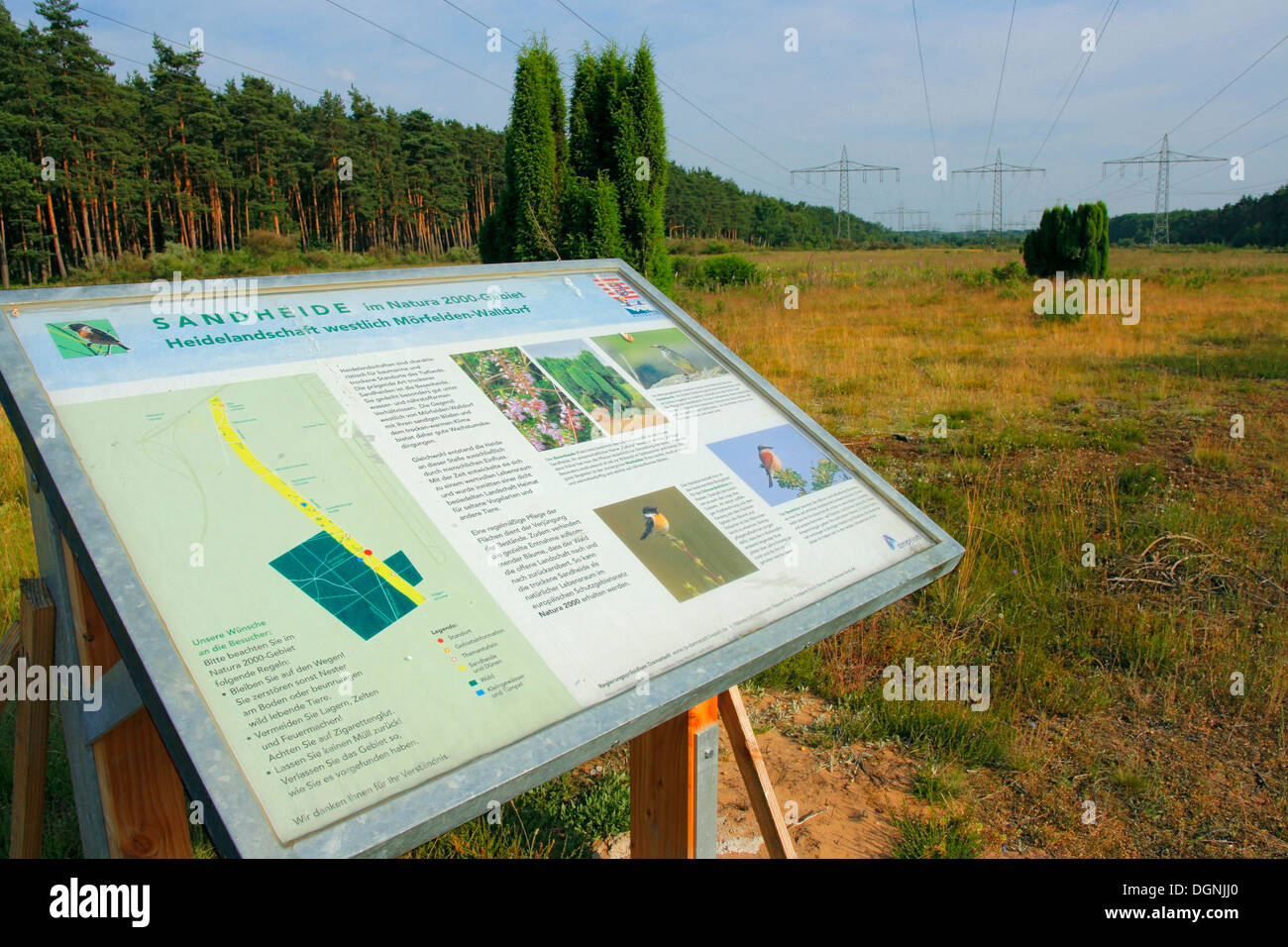 Information board for animal and plant life in the sand heath below high voltage transmission lines in the nature - Stock Image