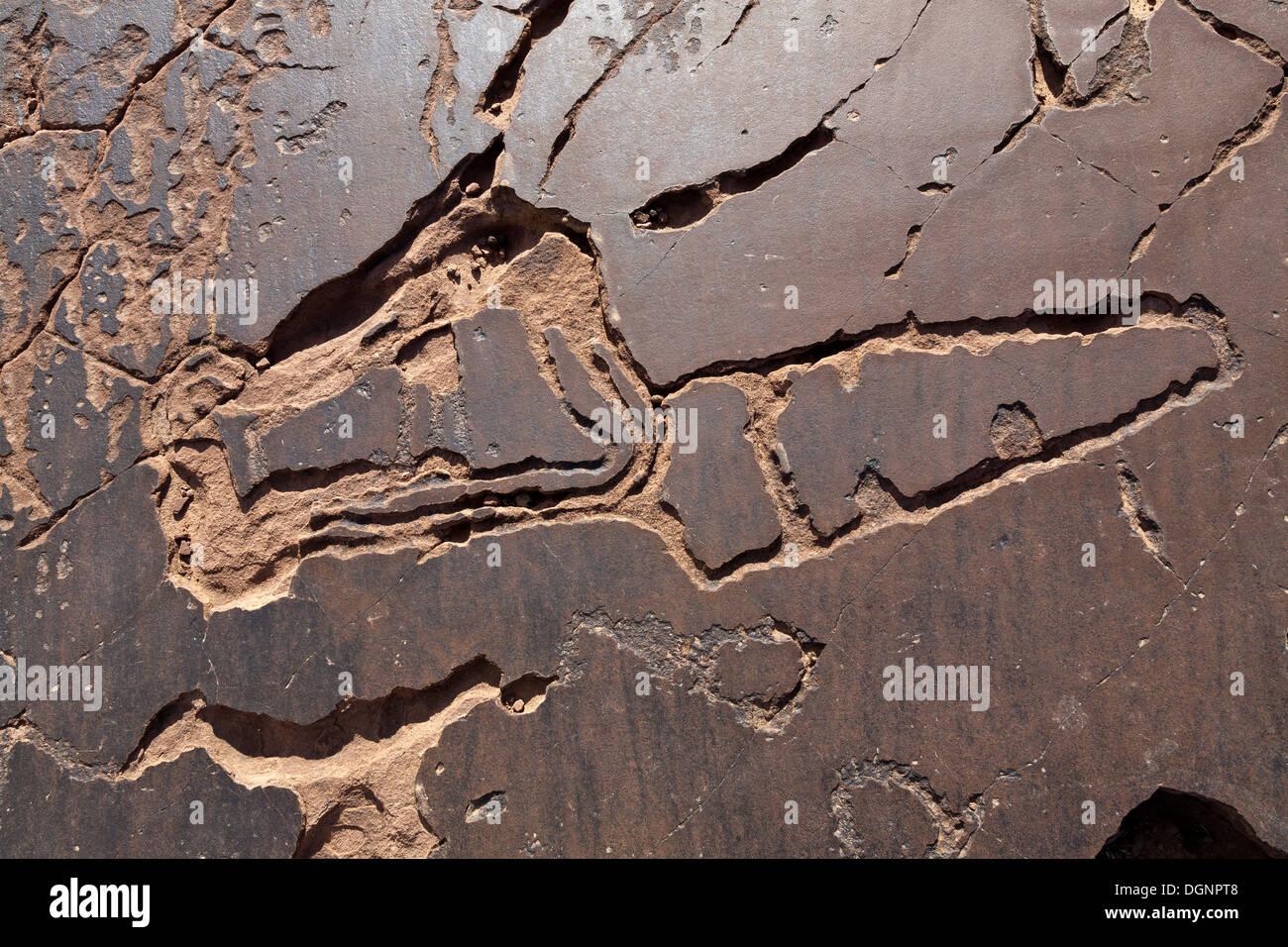 Prehistoric rock carvings at Oukaimeden Ski Resort in the High Atlas Mountains Morocco - Stock Image