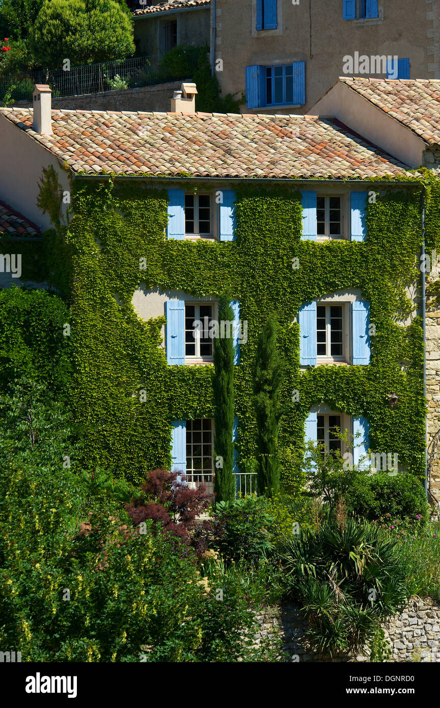 Ivy-covered house in a village, Provence, Aurel, Département Vaucluse, Provence-Alpes-Côte d'Azur, France - Stock Image