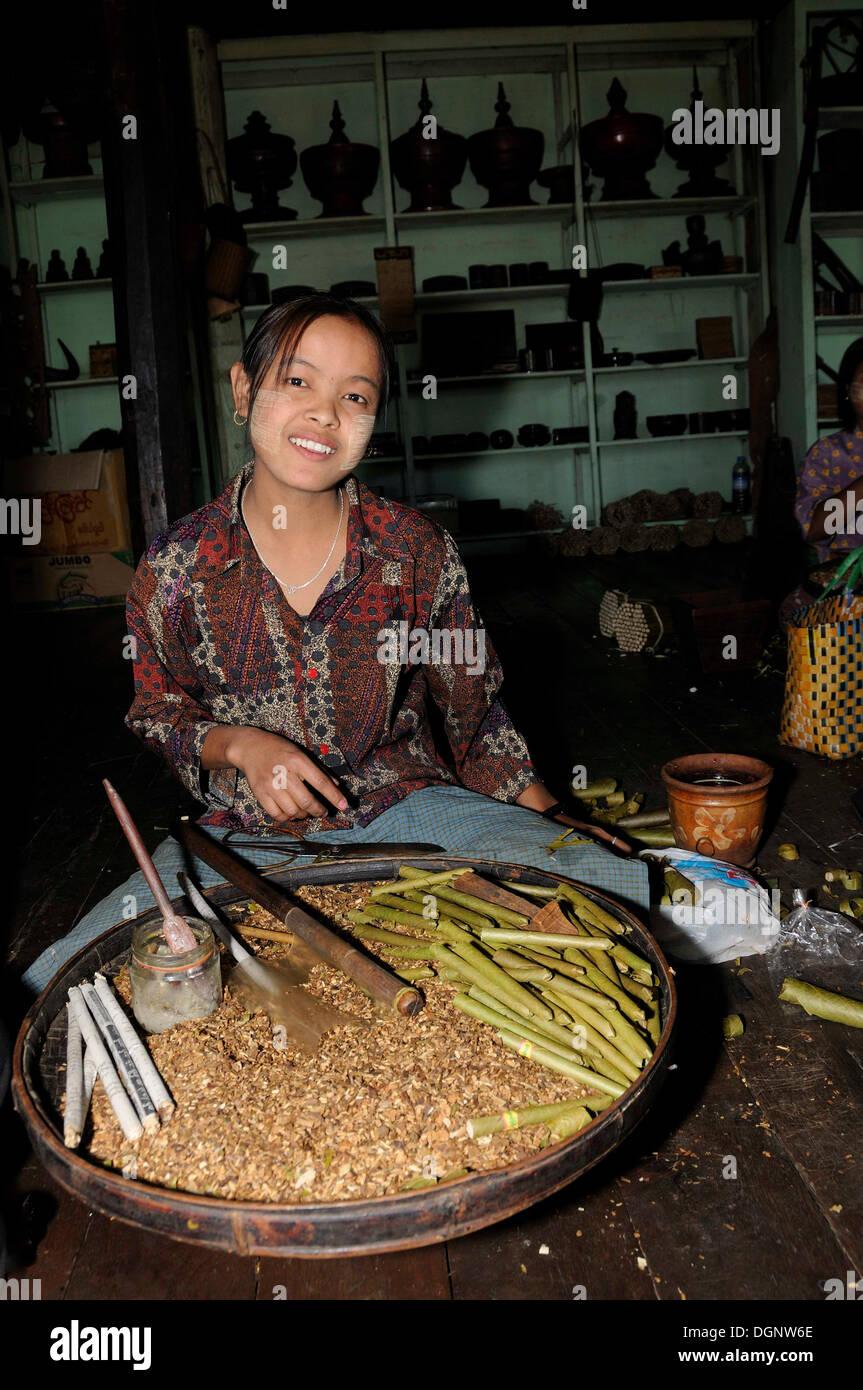 Young woman rolling the well-known cheroot cigars, Ywama, Inle Lake, Shan State, Myanmar, Burma, Burma, Southeast Asia, Asia - Stock Image