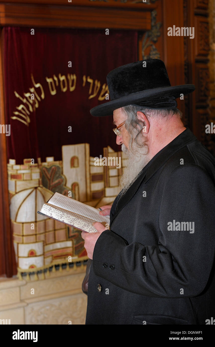Orthodox Jew praying in front of the Torah cabinet at the covered part of the Western Wall, Wailing Wall, Old City, Arab Quarter - Stock Image