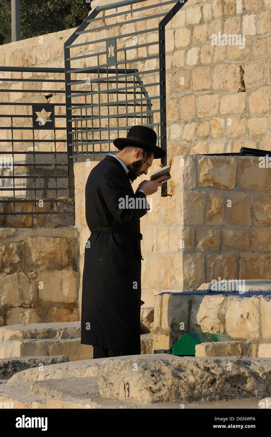 Orthodox Jew during evening prayer in the Jewish cemetery on the Mount of Olives, Jerusalem, Israel, Middle East - Stock Image