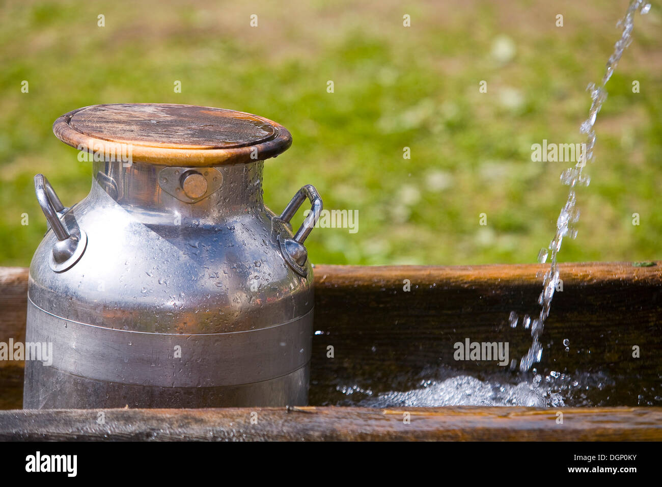 Milk cans in a well on a mountain pasture, South Tyrol, Italy, Europe Stock Photo