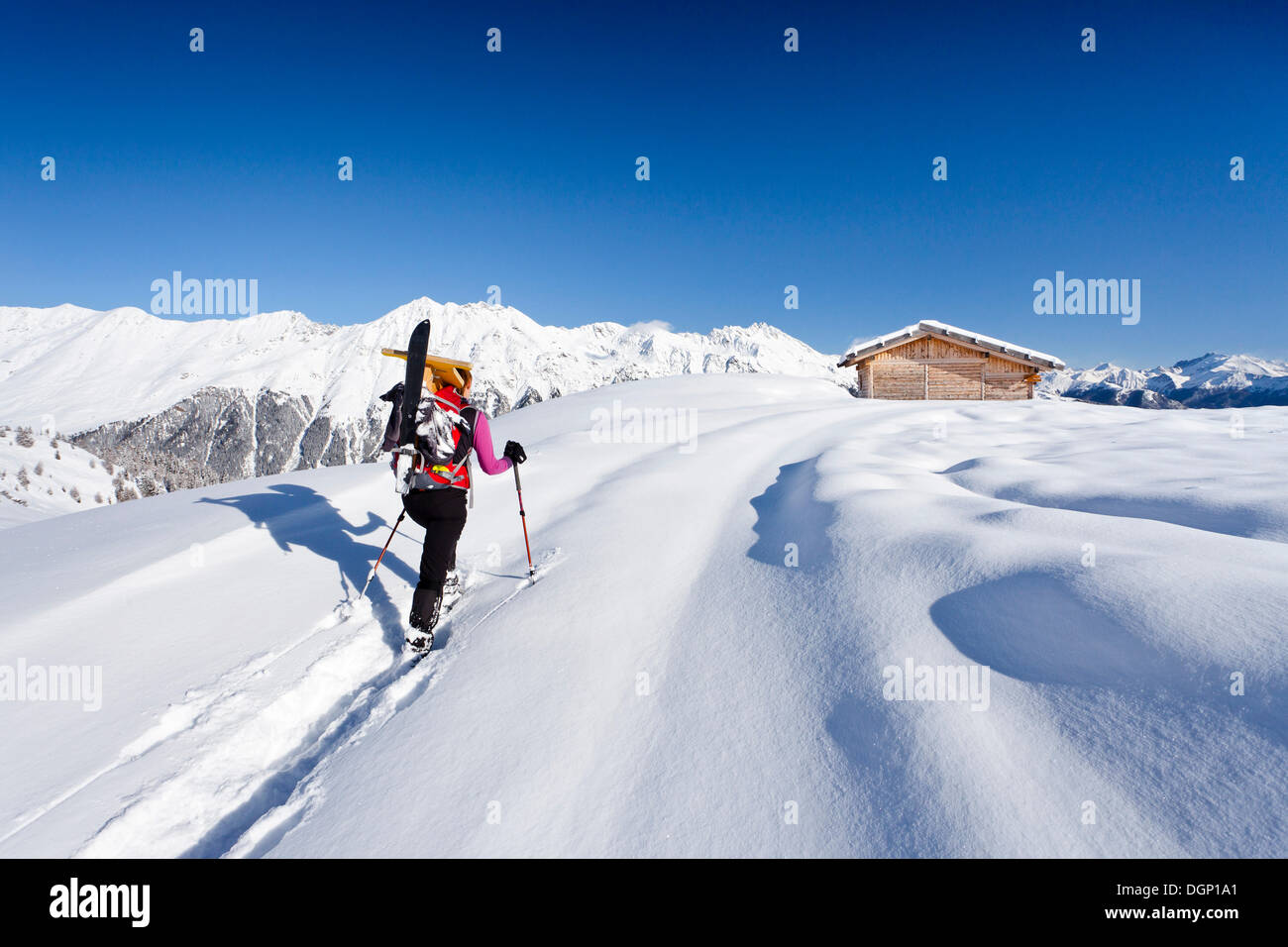 Snowshoer during the ascent to Jagelealm alp in the Ridnauntal valley above Entholz, Rosskopf mountain and the Telfer Weissen - Stock Image