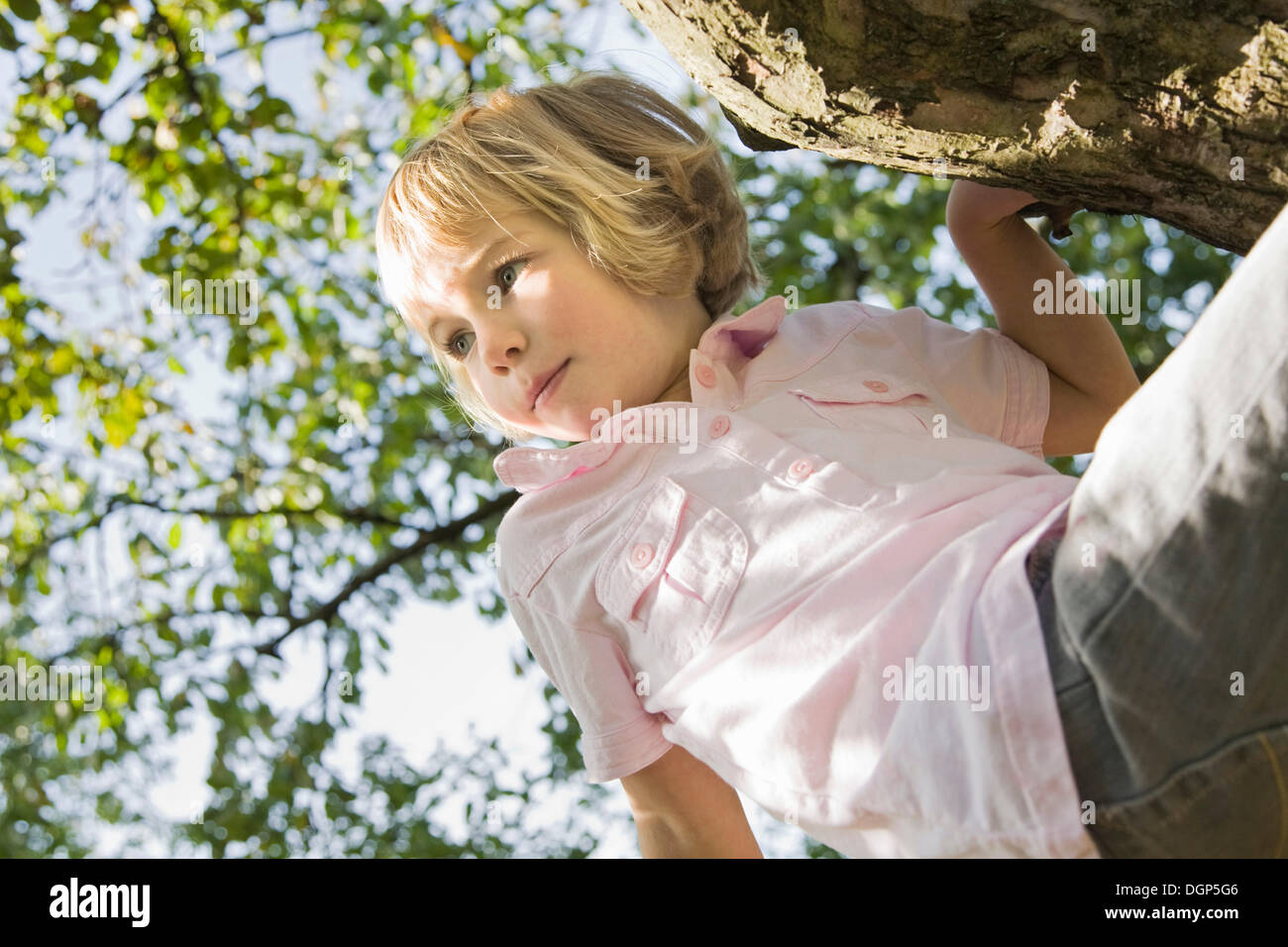 Girl sitting on a tree - Stock Image