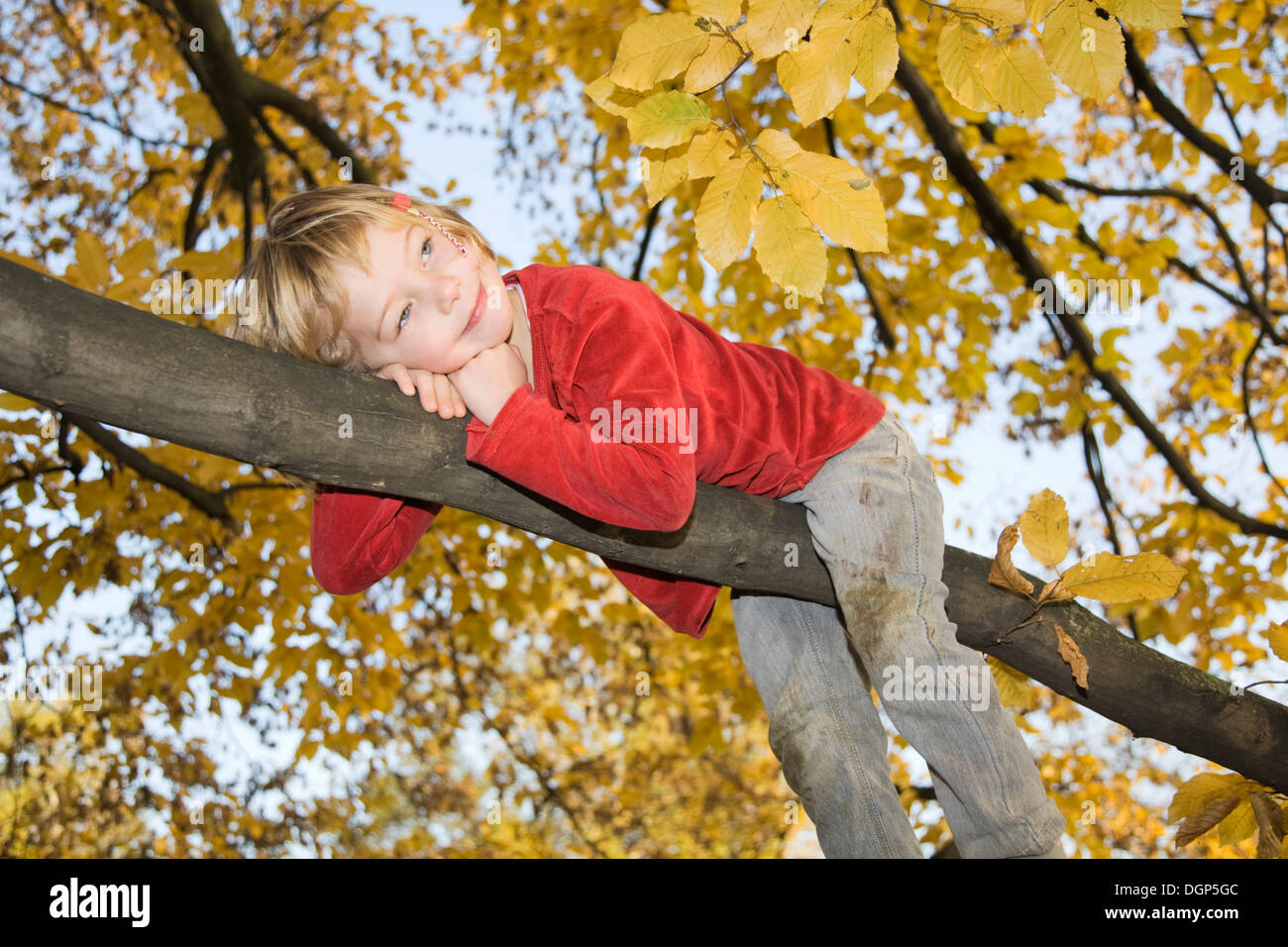 Little dreamy girl on a branch - Stock Image