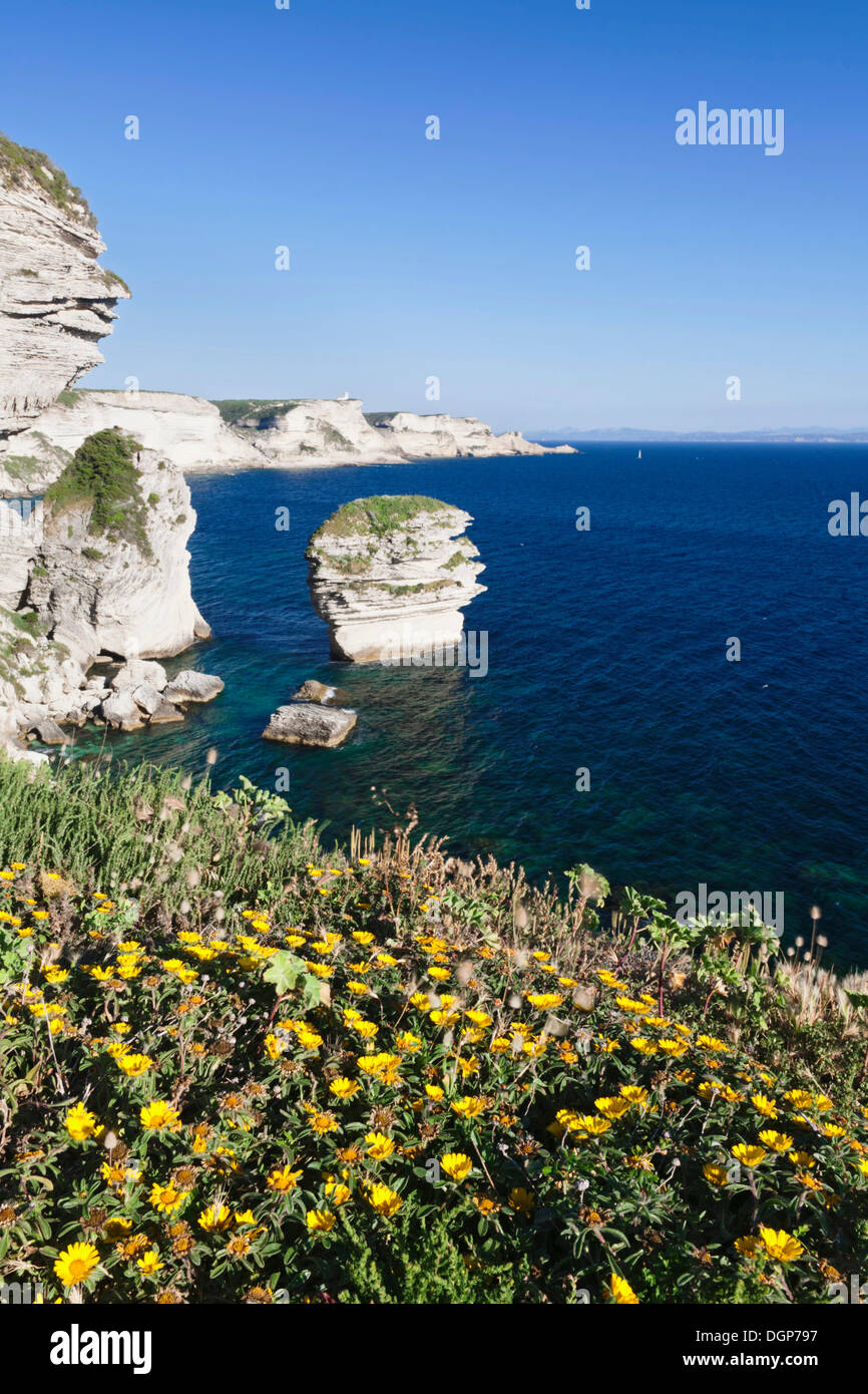 Free-standing rock Grain de Sable on the rocky coast near Bonifacio, Strait of Bonifacio, Corsica, France, Europe - Stock Image
