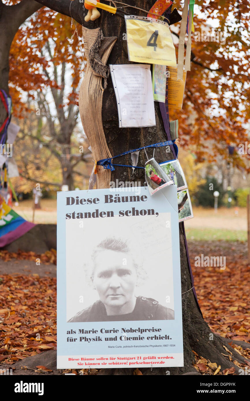 Protest posters against the Stuttgart 21 railway project on an old tree marked for felling, Schlossgarten, castle gardens - Stock Image