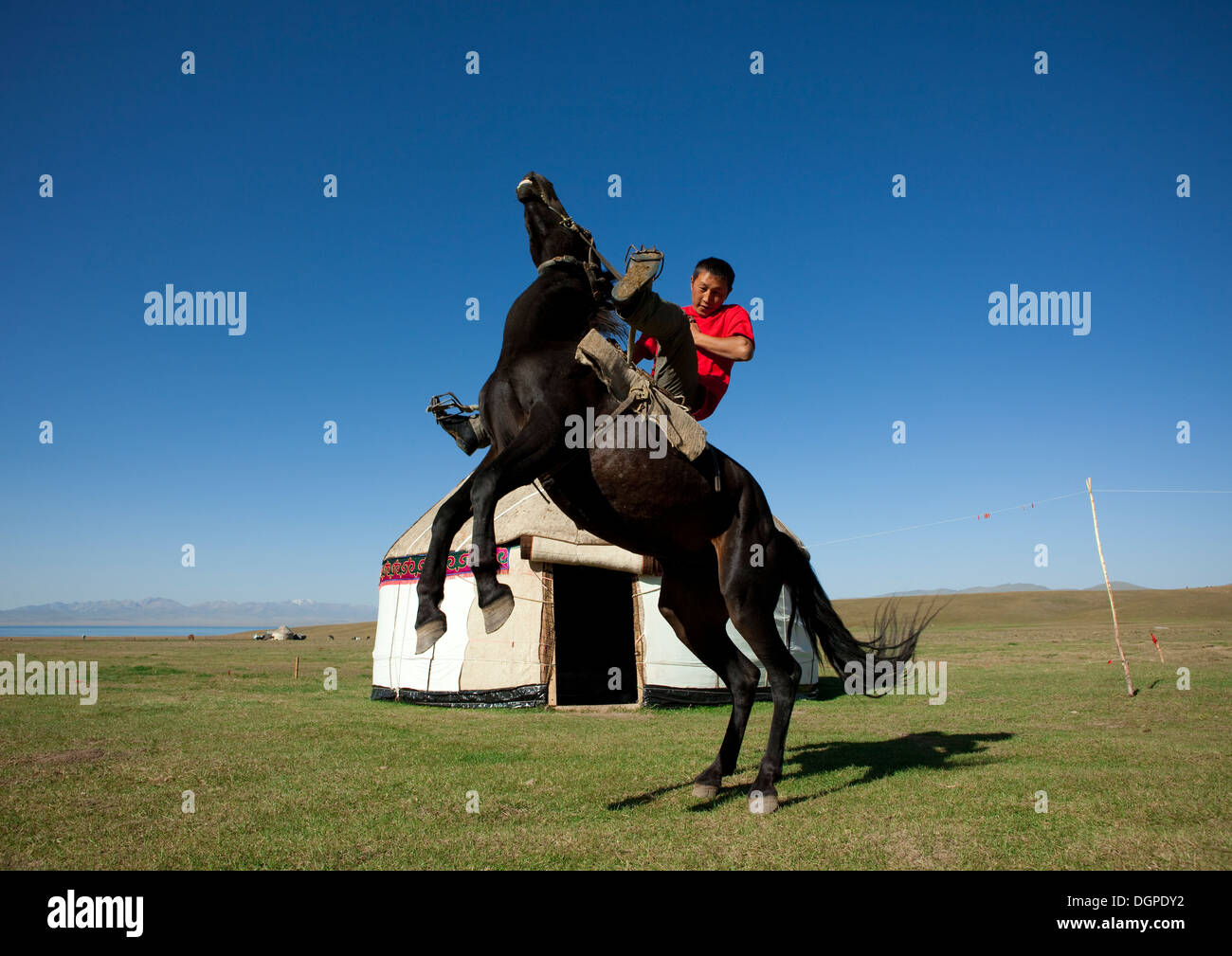 Horseman Rearing Up A Horse In Front Of A Yurt, Jaman Echki