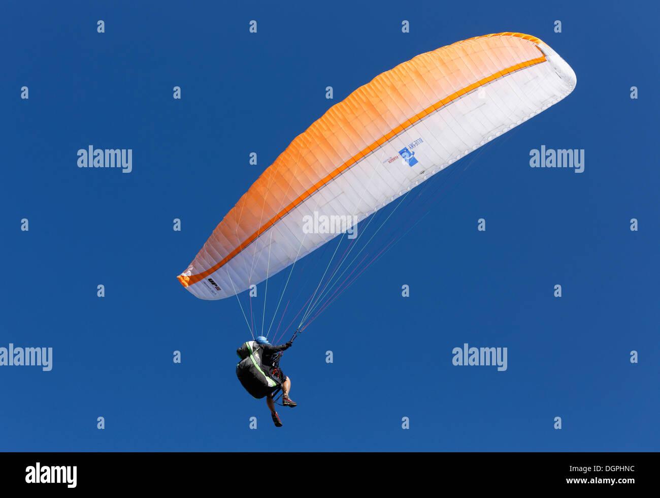 Paraglider paragliding, Zwoelferhorn, Sankt Gilgen, Salzkammergut, Salzburg State, Austria - Stock Image