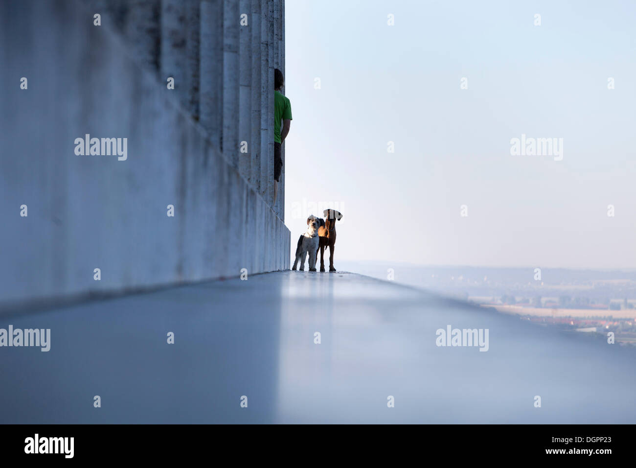 Two dogs on the Walhalla with a man standing almost hidden between the columns, Donaustauf, Bavaria - Stock Image