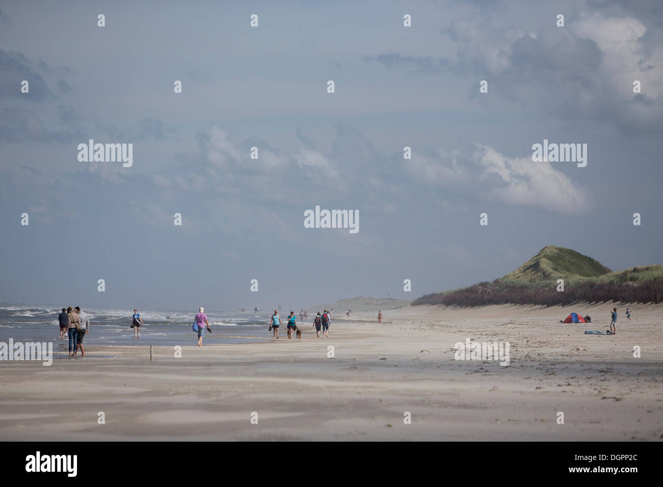 Eastern section of a beach for dogs, Langeoog Island, Lower Saxony Stock Photo