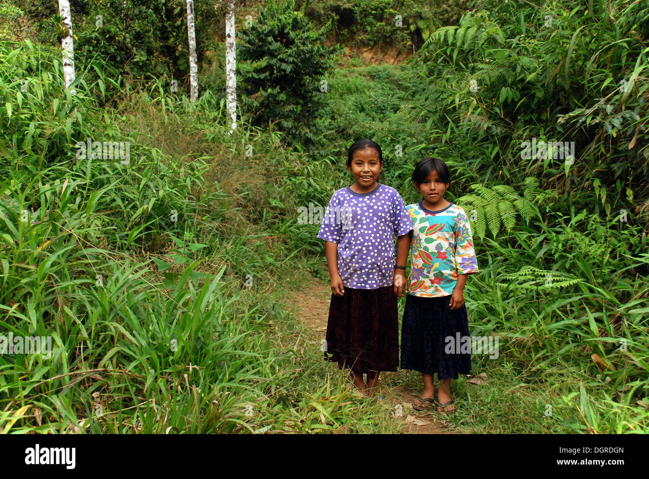 Two girls of the indigenous peoples, Amazonia, Bolivia, South America - Stock Image