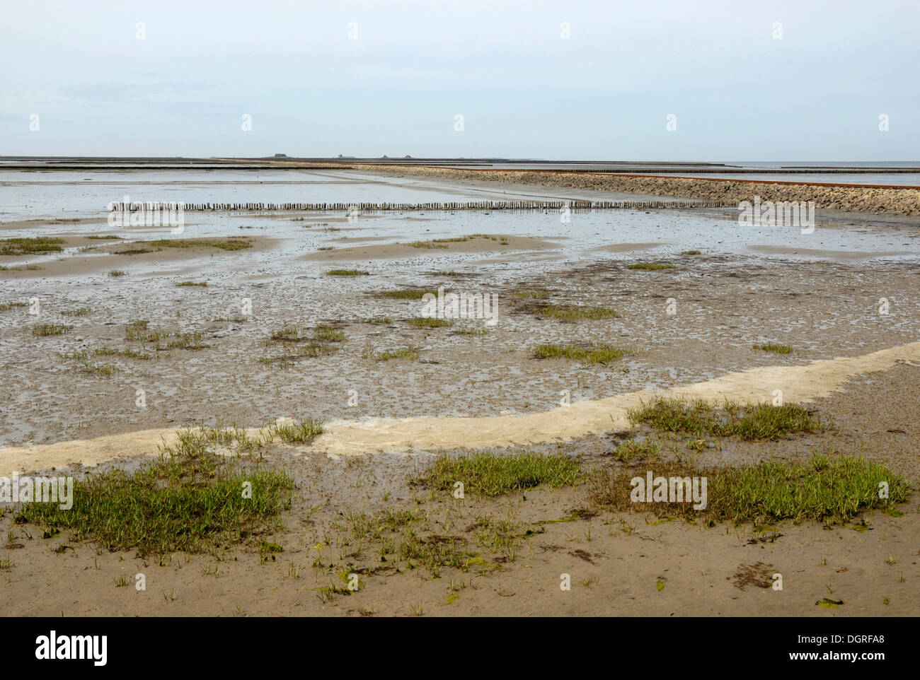 View over the mud flats at low tide, breakwaters and trolley causeway to Nordstrandischmoor island, Nationalpark - Stock Image