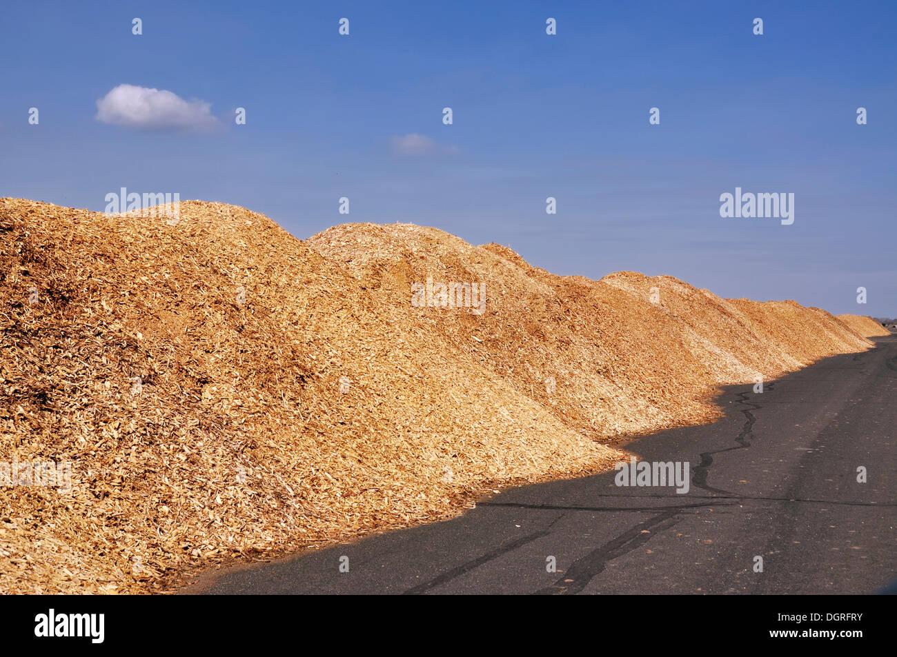 Wood chip depot, energy wood - Stock Image