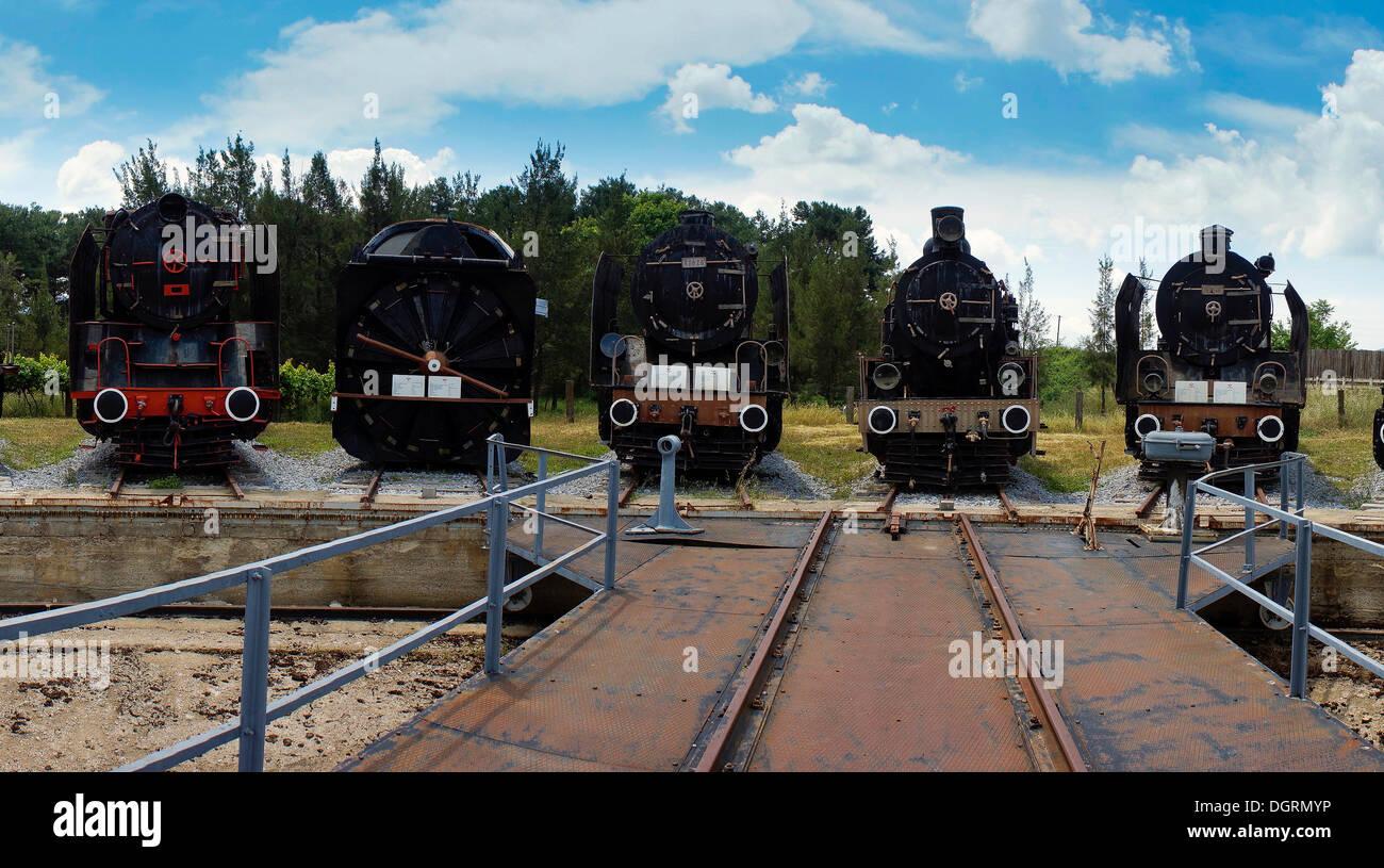 5 locomotives standing in front of the turntable, Çamlik Railway Museum, Çamlik, Turkey, Asia - Stock Image