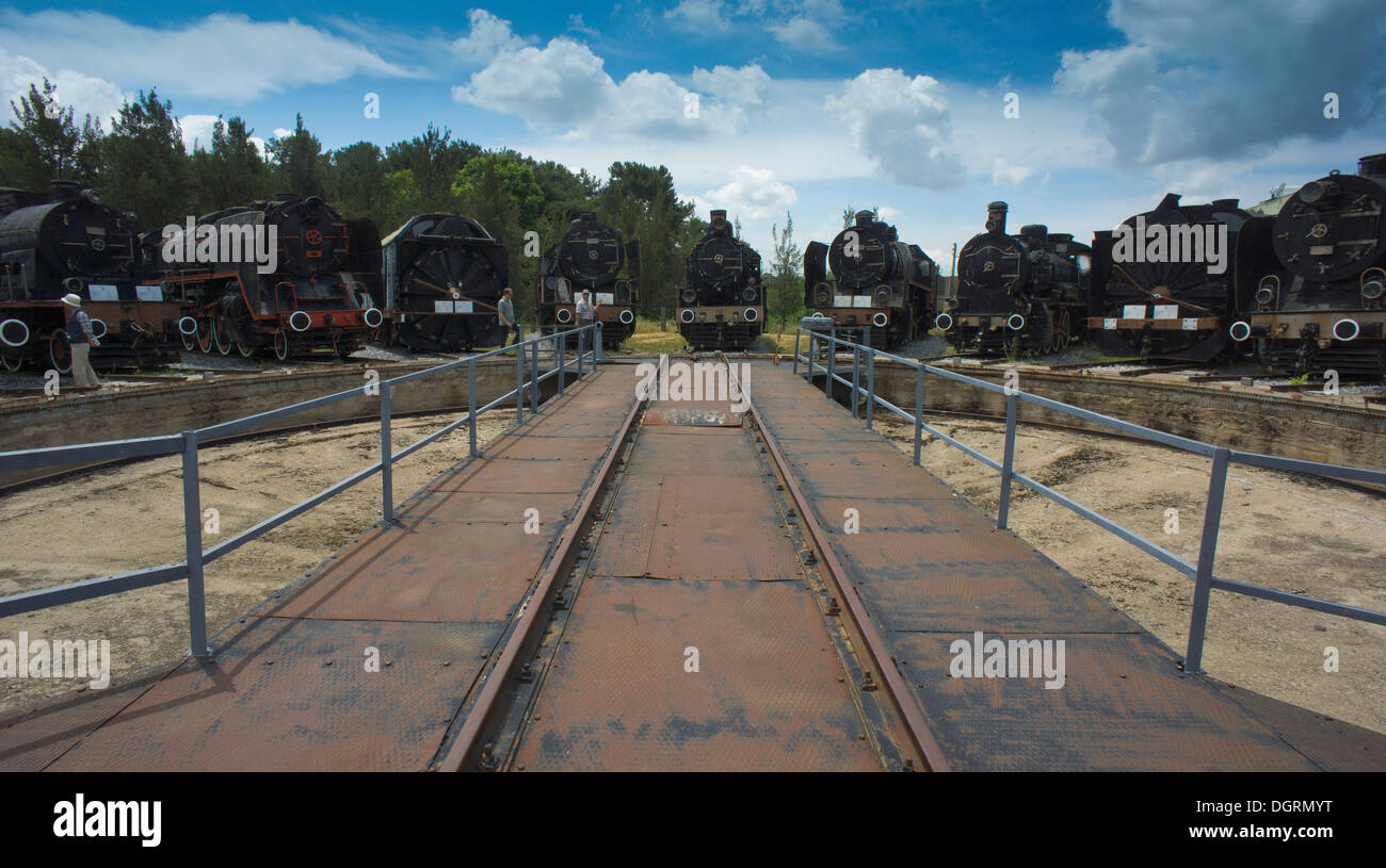 8 locomotives and a snow blower standing in front of the turntable, Çamlik Railway Museum, Çamlik, Turkey, Asia - Stock Image