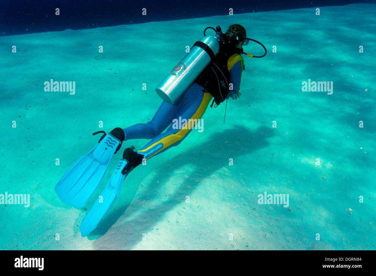 Diver, South China Sea, Balnek, -, Busuanga Island, Calamian Islands, Palawan, Mimaropa, Philippines - Stock Image