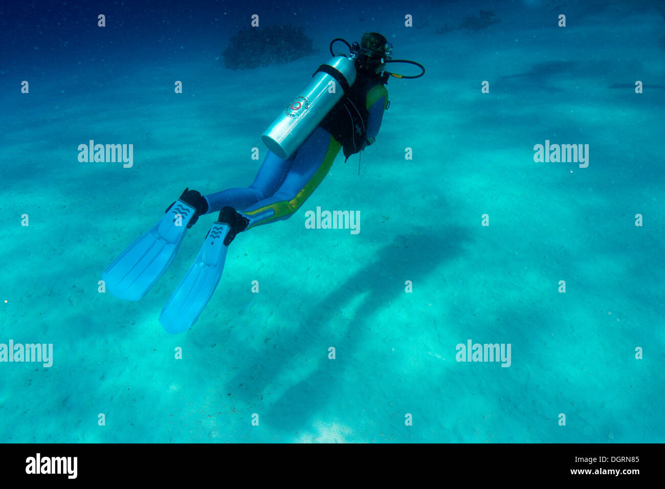Scuba diver, South China Sea, Balnek, -, Busuanga Island, Calamian Islands, Palawan, Mimaropa, Philippines - Stock Image