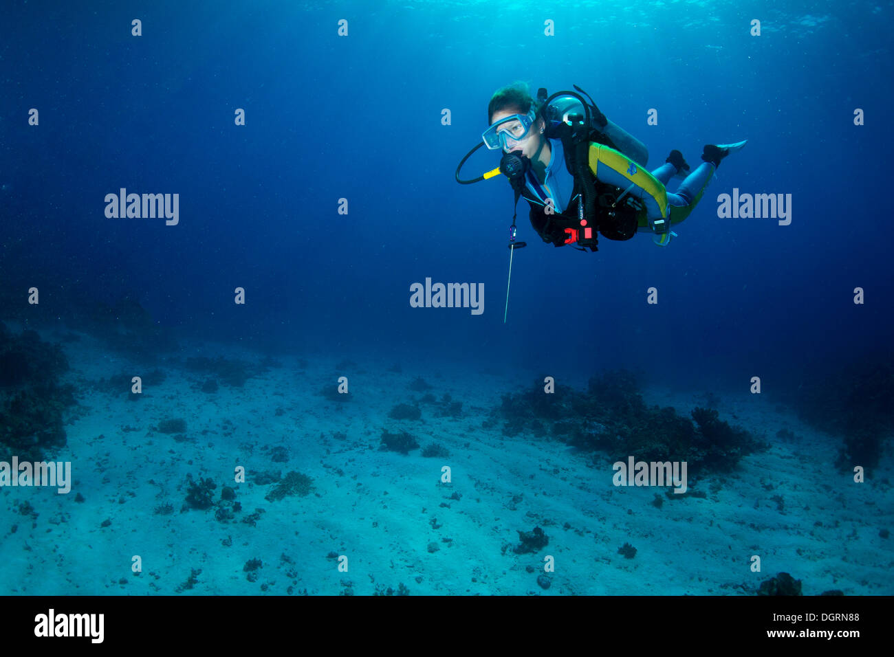 Diver, South China Sea, Mulaong, -, Mimaropa, Philippines - Stock Image
