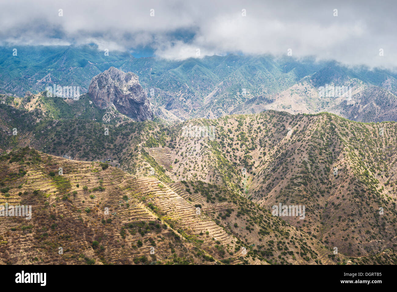 Misty mountain landscape of northern La Gomera, with juniper trees, agricultural terracing and the iconic phonolitic Roque Cano - Stock Image