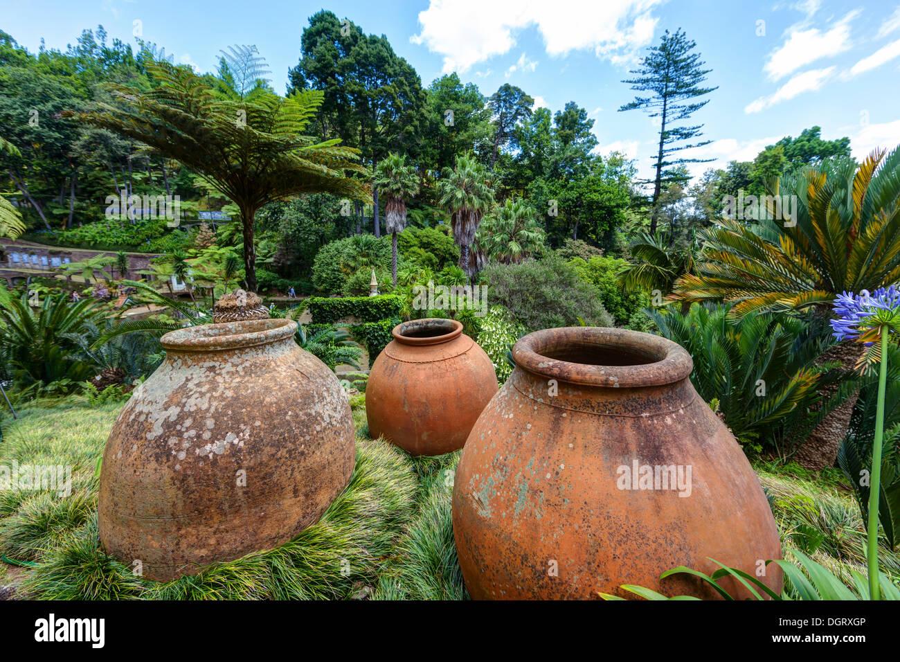 Jardim Botânico Da Madeira Or Botanical Garden, On The Grounds Of The Farm  Of The