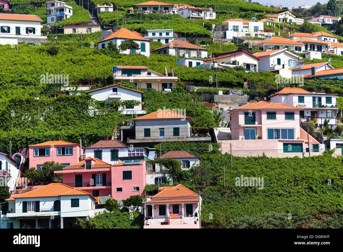 The colorful houses of Câmara de Lobos, Funchal, Estreito de Câmara de Lobos, Ilha da Madeira, Portugal Stock Photo