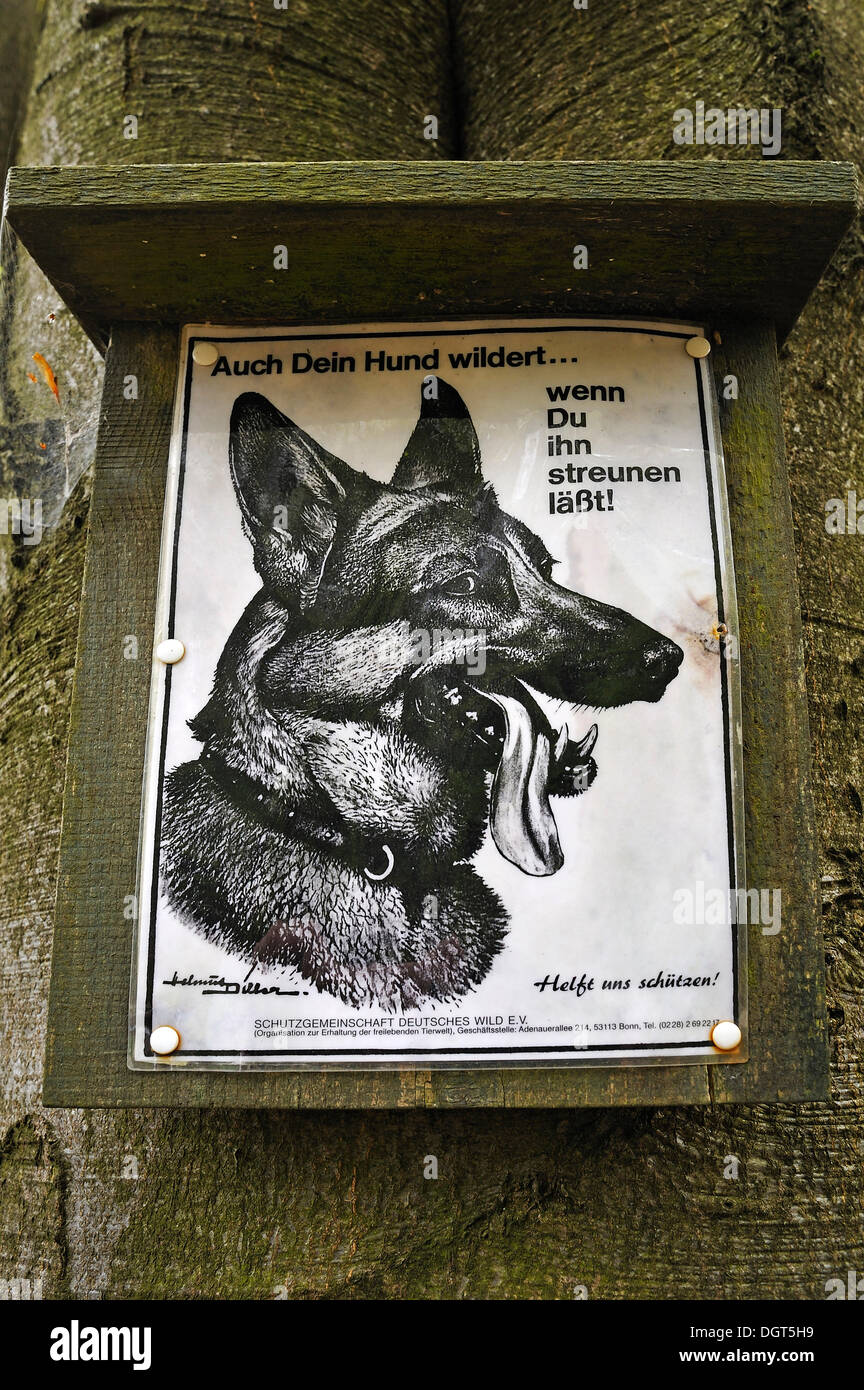 Sign 'Auch Dein Hund wildert ... wenn Du ihn streunen laesst', German for 'even your dog will hunt if you let it stray!', Möchs - Stock Image