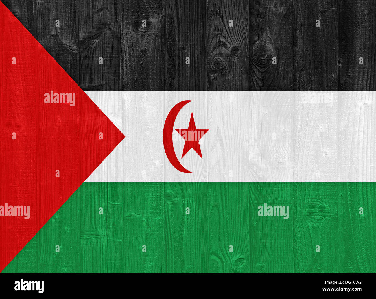 gorgeous Sahrawi flag painted on a wood plank texture - Stock Image
