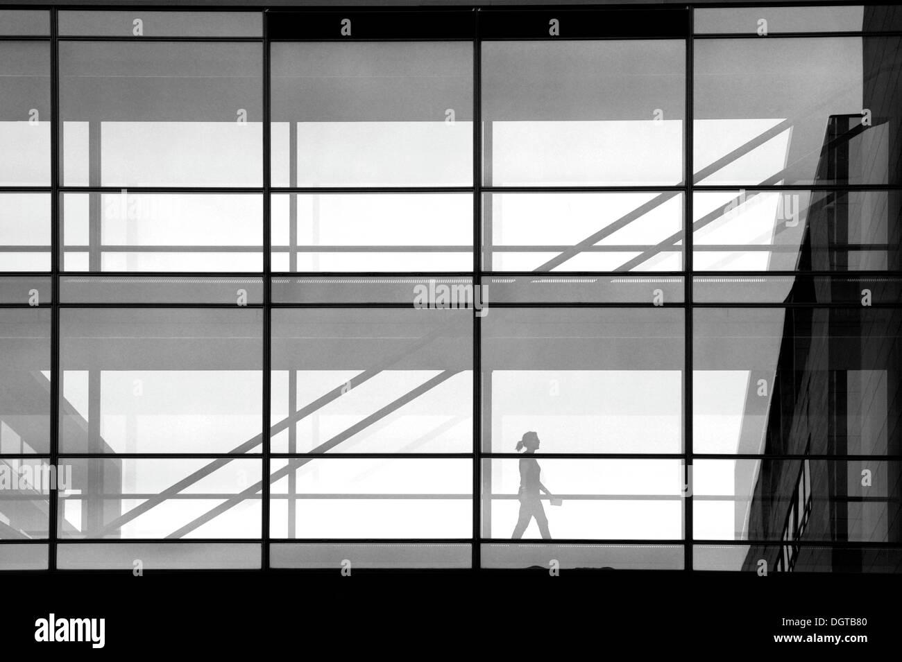 Transparent transition between office buildings, Christianshavn, Copenhagen, Denmark, Scandinavia, Europe, PublicGround - Stock Image