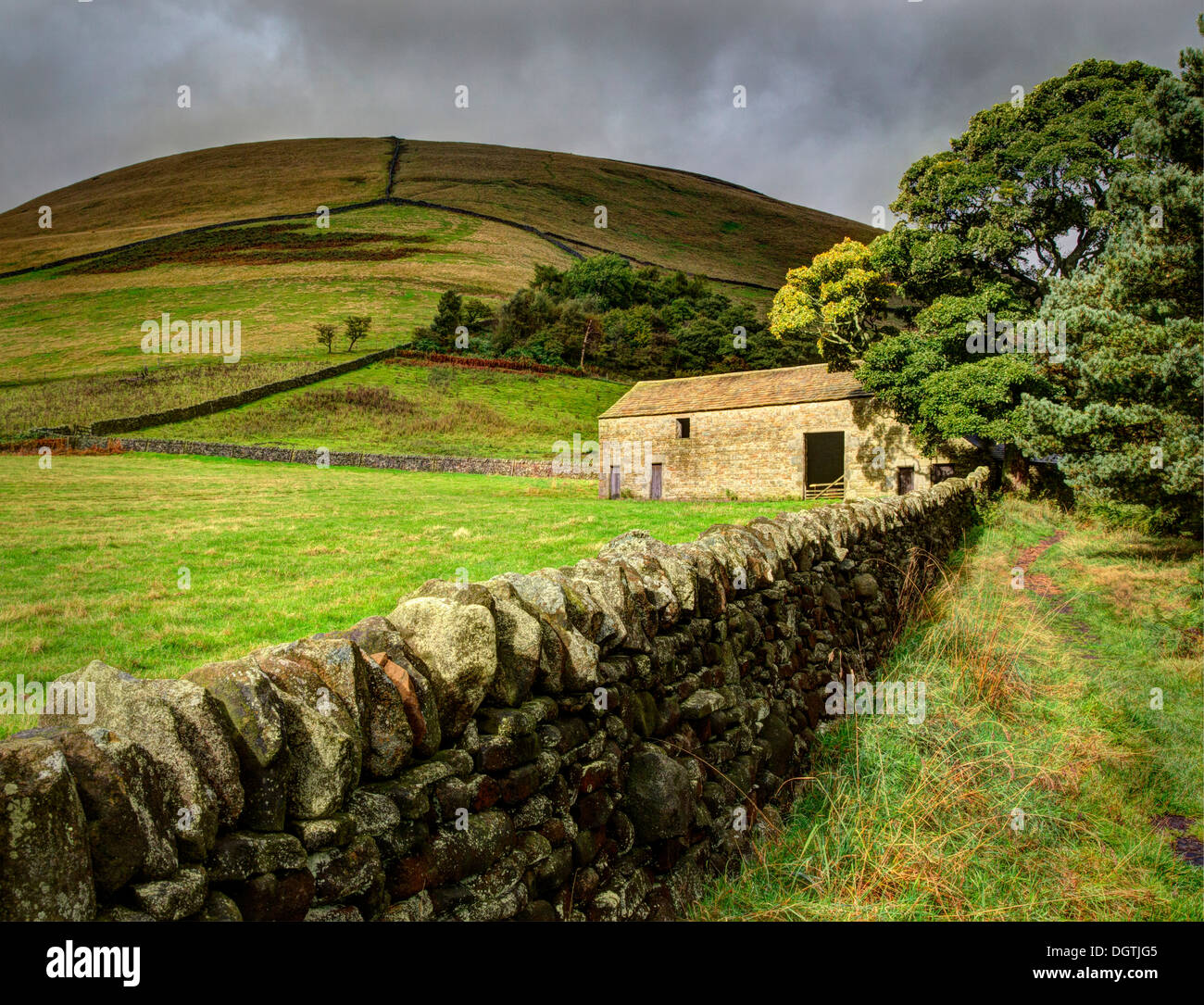 Field barn at the entrance to Crowden Brook on Kinder Scout near Edale in the Derbyshire Peak District - Stock Image