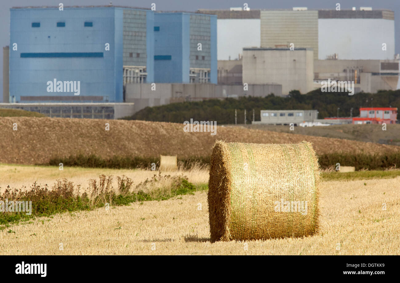 Harvest time near Hinkley Point A and B nuclear power station reactor buildings on the Somerset shore of the Bristol Channel UK - Stock Image
