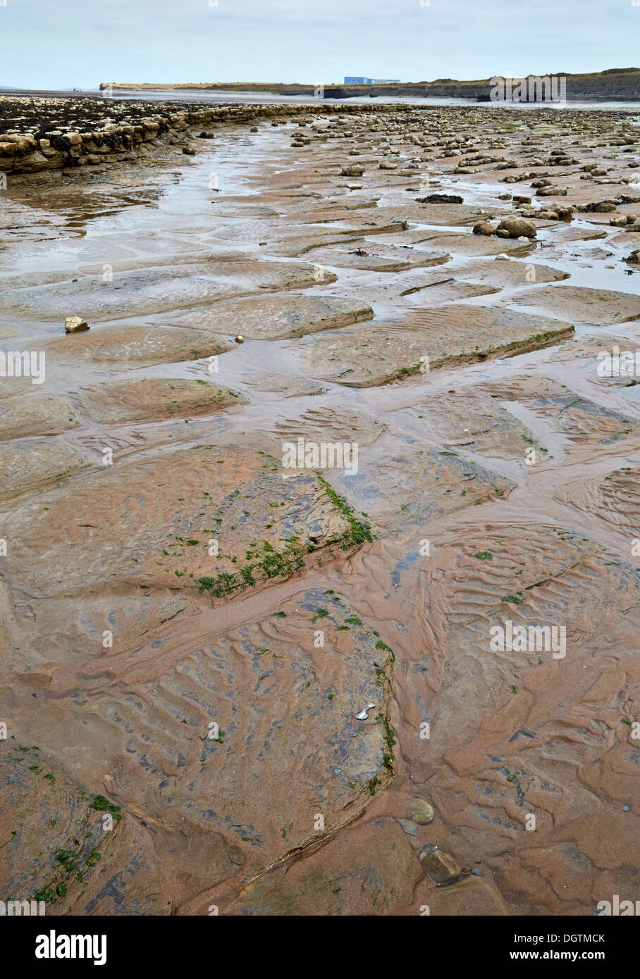 Natural paving in Lias limestone beds near Hinkley Point nuclear power station on the Somerset shore of the Bristol Channel UK - Stock Image