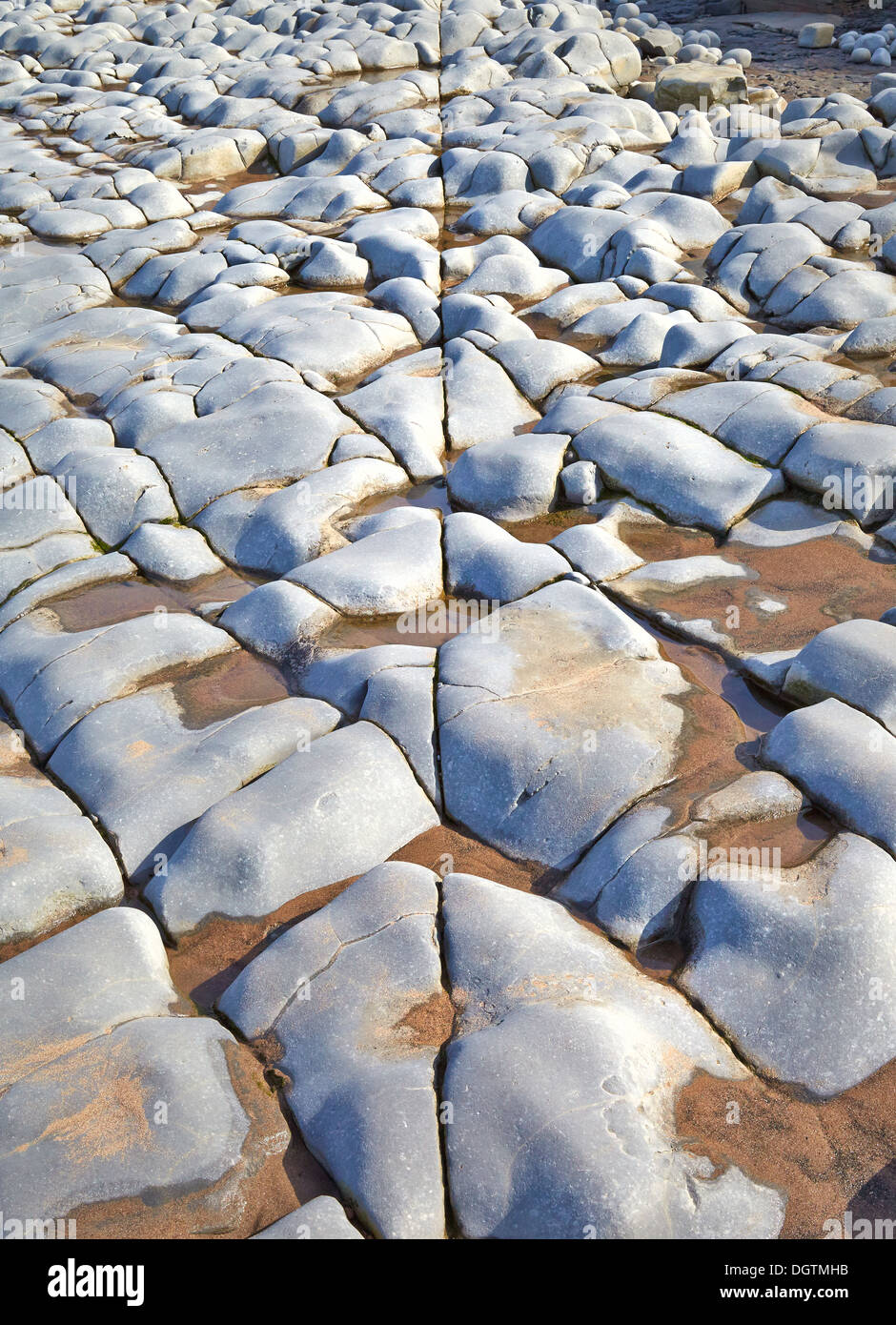 Fault line running against jointing in beds of eroded Blue Lias limestone in the Severn Estuary near Lilstock Somerset - Stock Image