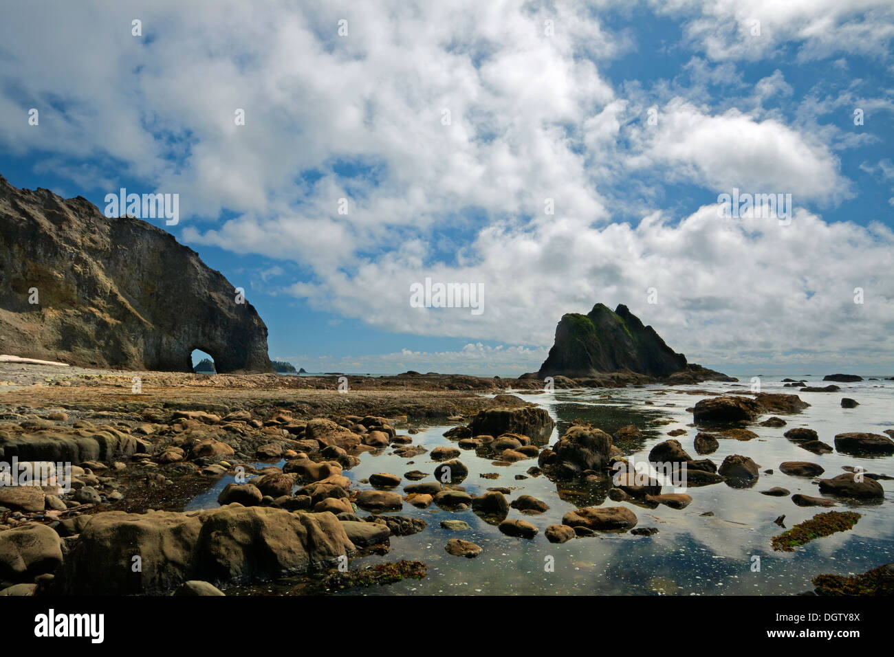 WASHINGTON- Seastacks, tidepools, windows and offshore islands at Hole-in-the-Wall on the Pacific Coast in Olympic National Park - Stock Image