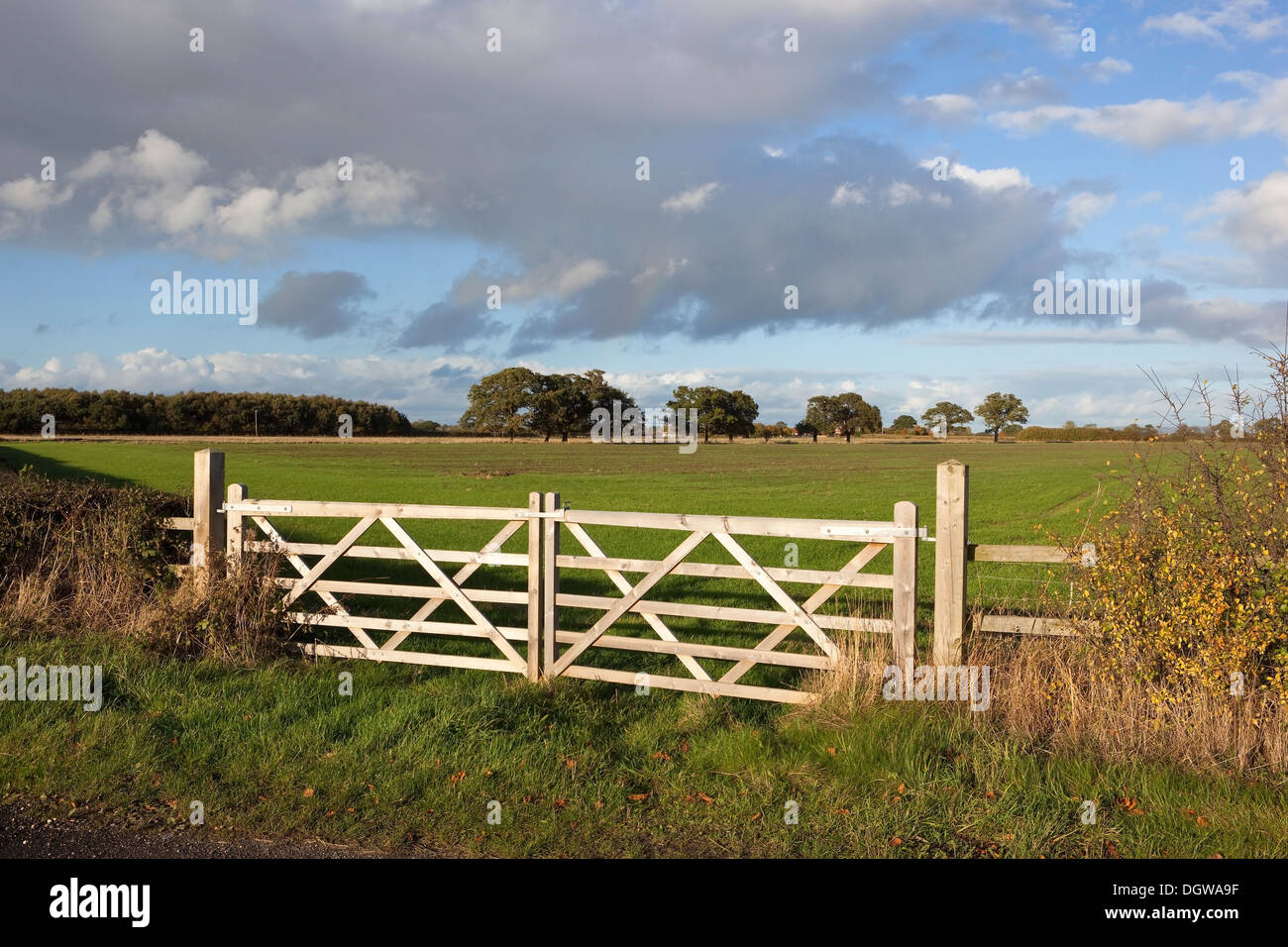 Traditional Style Wooden Farm Gates Enclosing A Young Wheat Field